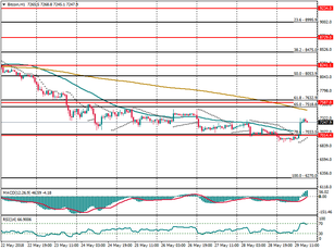 Bitcoin (BTC/USD): strong support placed around $7,033