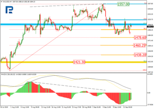 Fibonacci Retracements Analysis 16.09.2019 (GOLD, USDCHF)