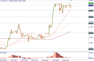USD/TRY: there may be a correction